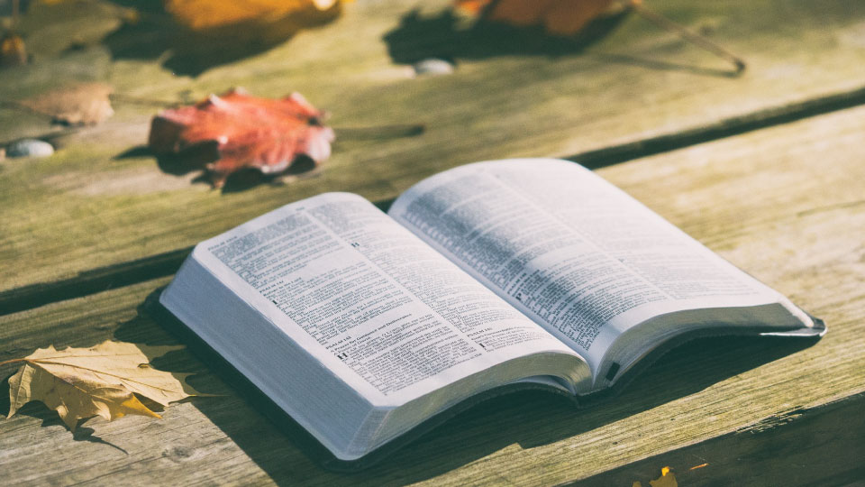 Evangelism is a necessary part of Discipleship