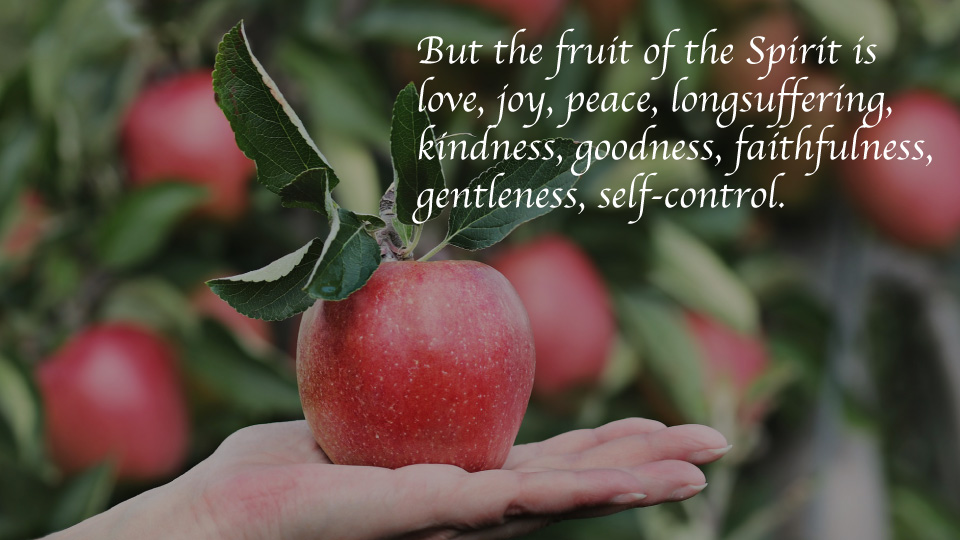 The Fruit of the Spirit Part 3